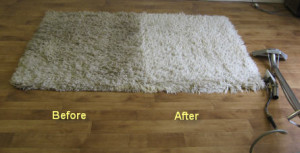 Area Rug Cleaning Specials St Johns County