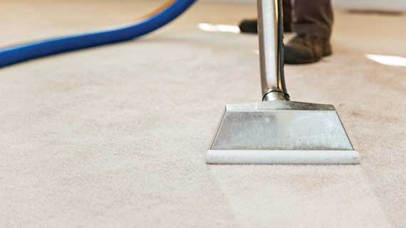 Carpet Cleaning Jacksonville